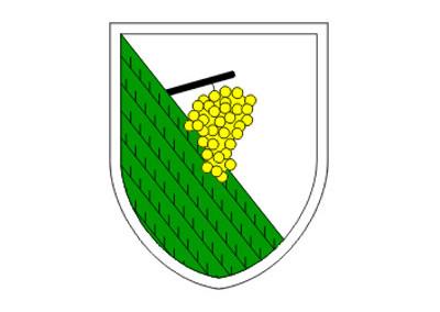 Občina Kungota
